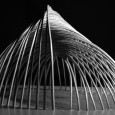 Bamboo structure project in Iran by Pouya Khazaeli Parsa  13